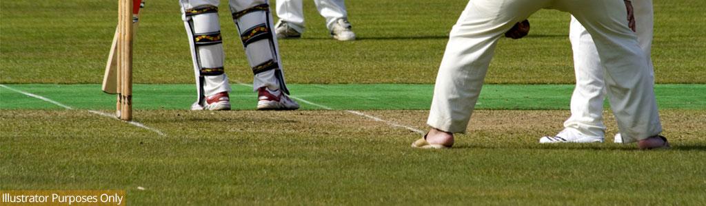 Artificial Cricket Wickets
