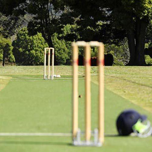 Artificial-Cricket-Header